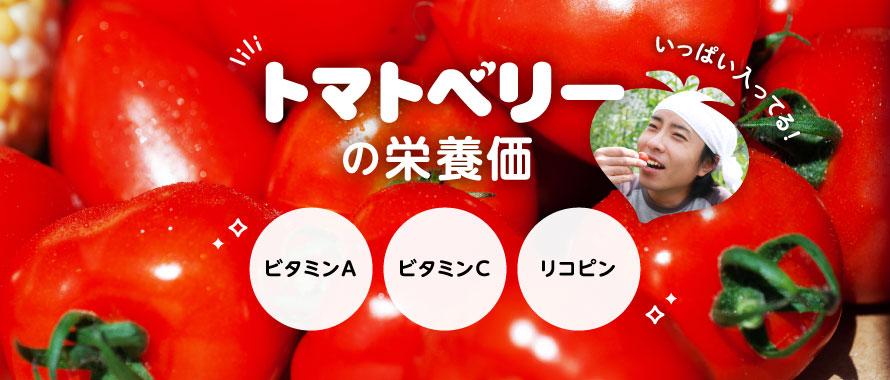 トマトベリーの栄養価「ビタミンA」「ビタミンC」「リコピン」